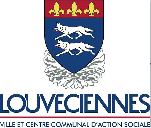 VILLE DE LOUVECIENNES , DIRECTEUT D'ACCUEIL COLLECTIF DE MINEURS