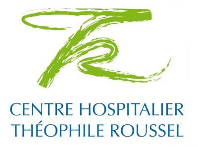 CENTRE HOSPITALIER THEOPHILE ROUSSEL , ADJOINT DES CADRES HOSPITALIER (H/F)